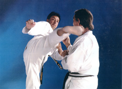 Karate Windsor - ash_school