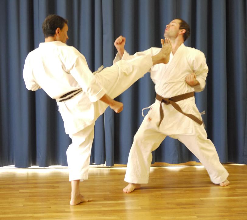Windsor Karate - Adult Karate Photo