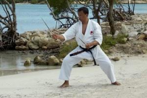 Ashley Jansen Beach Karate